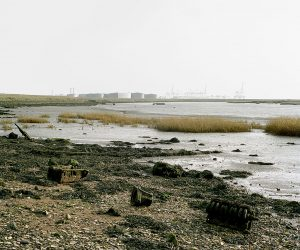Image from Soundings from the Estuary
